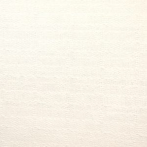 White Flax Plain - White - Discount Designer Fabric - fabrichousenashville.com