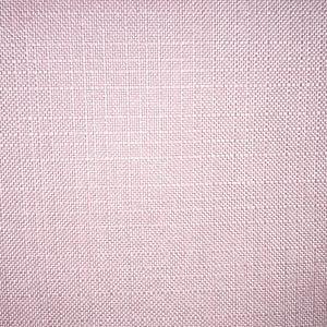 Turbo - Blush - Discount Designer Fabric - fabrichousenashville.com